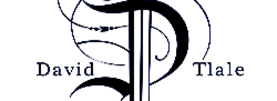david_logo_copy